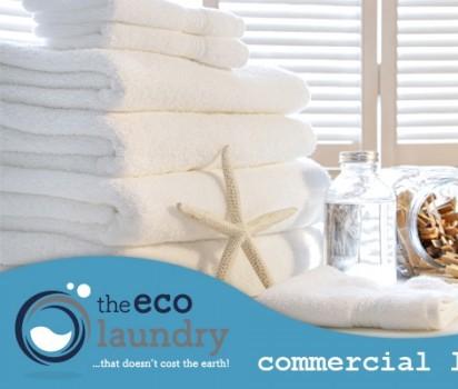The Eco Laundry, near Dartmouth